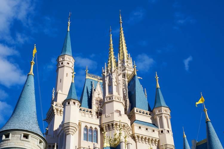 Flroeo properties near Disney, view of magic kingdom